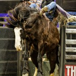 World's Toughest Rodeo | Des Moines 2014